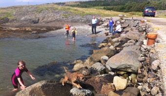 rocks-seaside